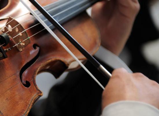 Violino – Viola
